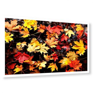 Autumn Leaves - photo print